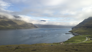 Faroe Islands: The best investor is one with dirty shoes