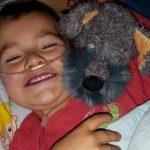 """Kind mit seltener Krankheit: Das Spieltier """"Hund Cuba"""" spendet Trost."""